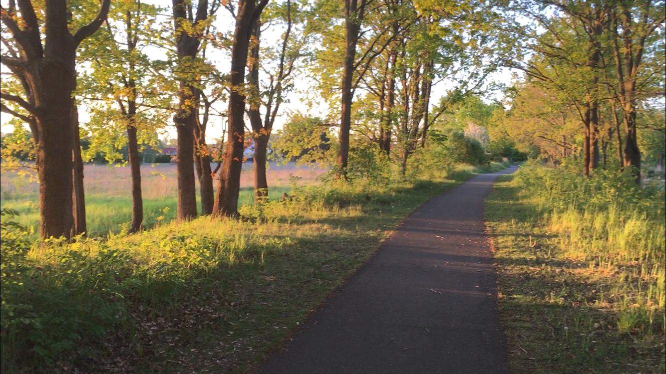 Mein absoluter Lieblingsweg zum joggen- Am Kanal zum Ende des Tages