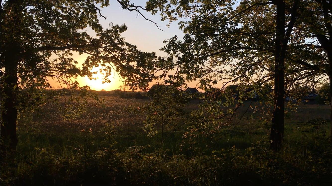 zum Sonnenuntergang